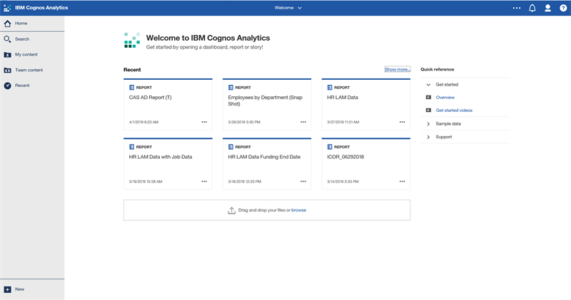 Example Cognos Home Screen